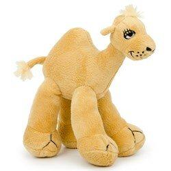 Cool Camel - средний
