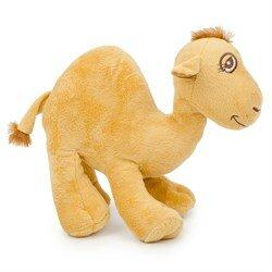 Cut Camel  - средний