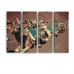 Модульная картина из 4 элементов - Караван