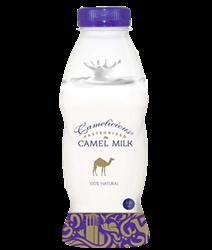Верблюжье молоко - натуральное  ( свежее )